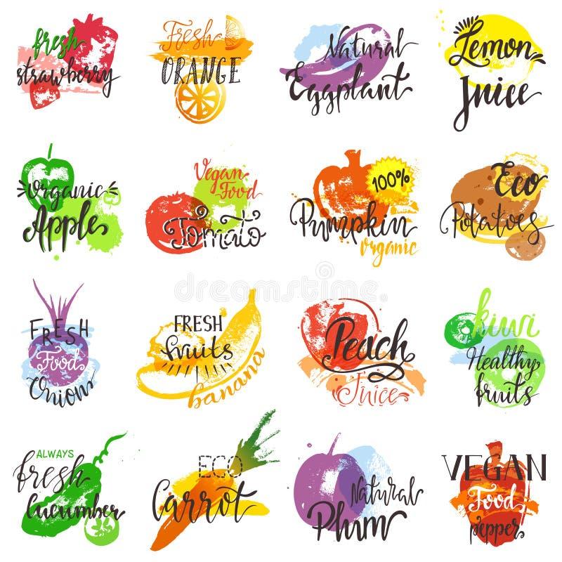 Logotipo vegetal frutado da abóbora do tomate da banana de maçã do alimento do eco do vetor dos frutos com rotulação da ilustraçã ilustração royalty free