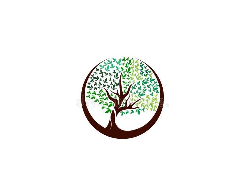 Logotipo verde del vector del elemento de la naturaleza de la ecología del árbol stock de ilustración