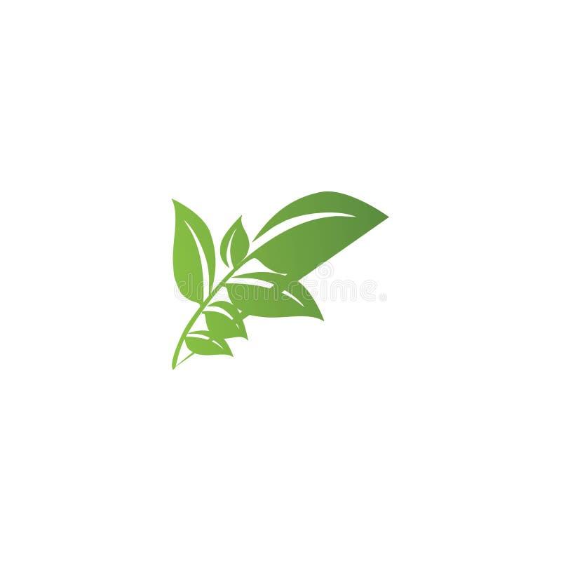 Logotipos de la ecolog?a verde de la hoja del ?rbol stock de ilustración