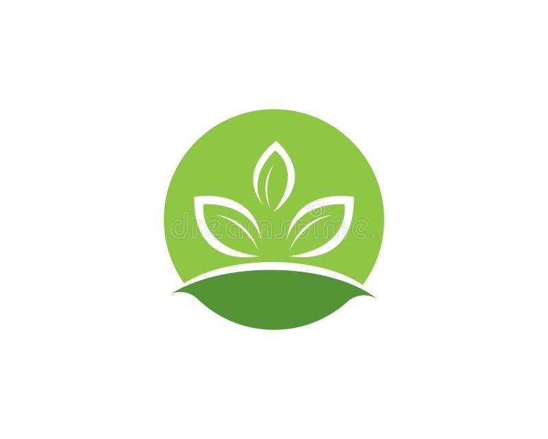 Logotipos del icono verde del vector del elemento de la naturaleza de la ecología de la hoja stock de ilustración