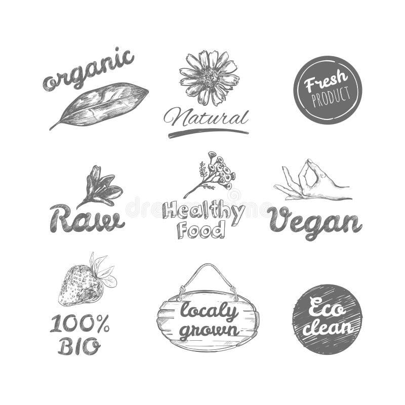Logotipos dibujados mano del vector Sano coma los logotipos fijados Vegano, comida natural y muestras de las bebidas stock de ilustración