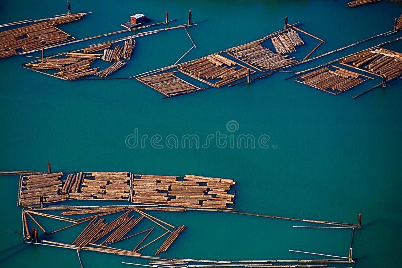Download Logs stock image. Image of destruction, afternoon, conifer - 18735871