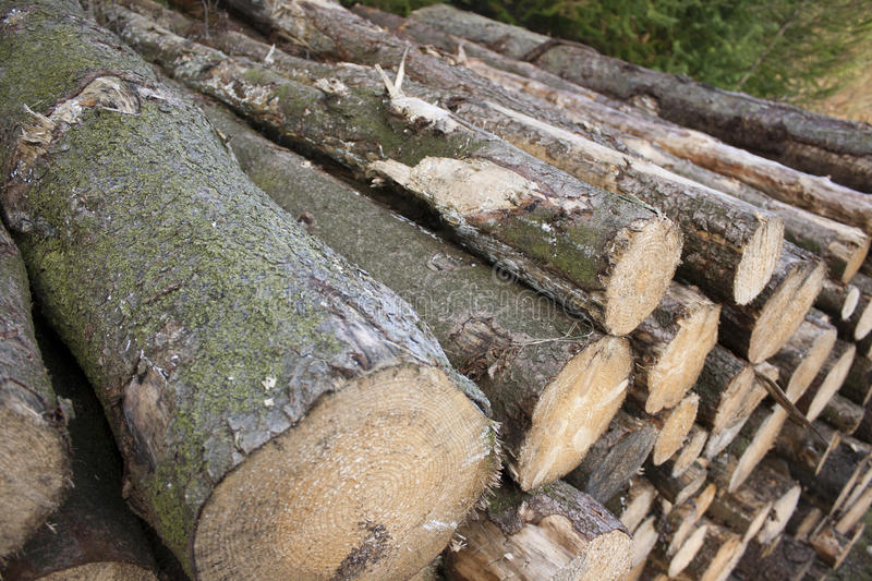 logs images stock