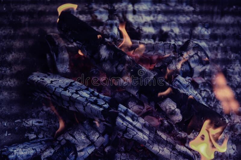 Logs in bonfire royalty free stock images