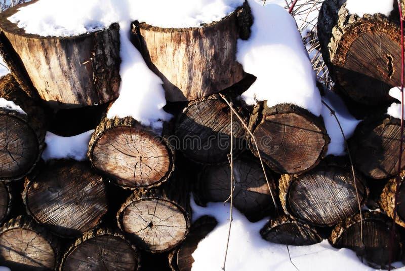 Logs cobertos de neve imagem de stock