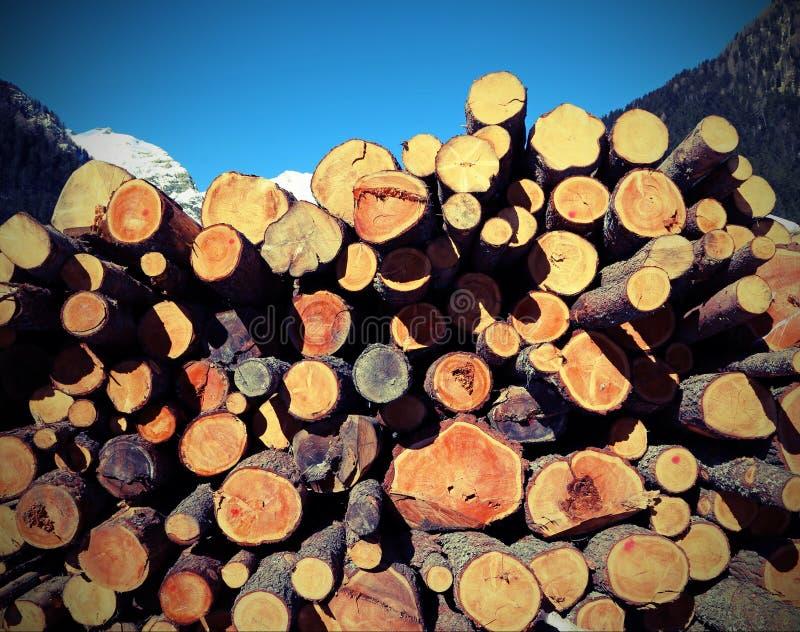 logs cortados pelo lenhador e pela pilha da madeira com e tonificado velho imagens de stock royalty free