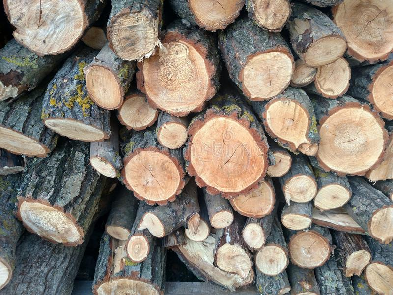 Logs crosscuts on the timber cutting Piles of cut wood tree trunk textures. Nature royalty free stock images