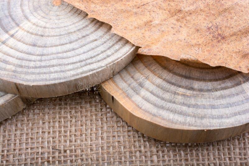 Download Logs De Madeira Cortados Em Partes Finas Redondas Ilustração Stock - Ilustração de redondo, elemento: 107527242
