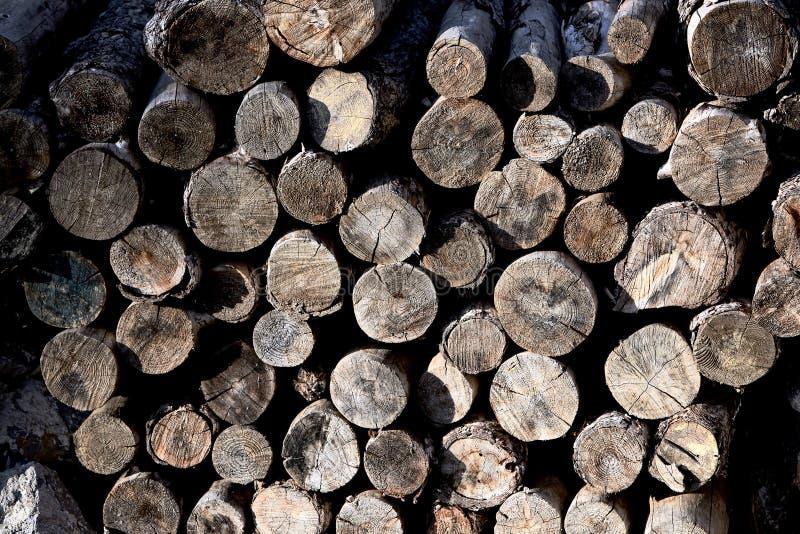 Logs de madeira desbastados para a venda foto de stock royalty free