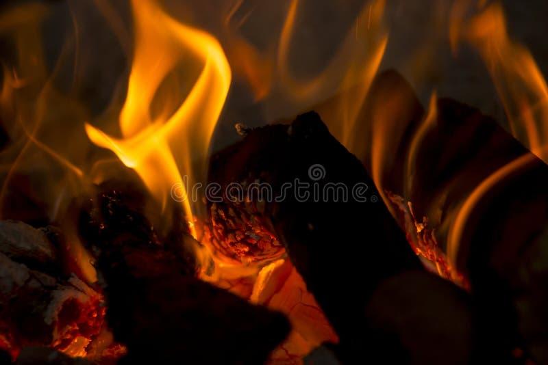 Logs e carvão no fogo imagem de stock