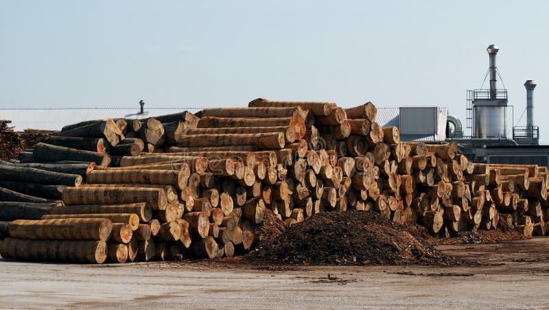 Logs empilhados fora de uma fábrica da mobília fotos de stock royalty free