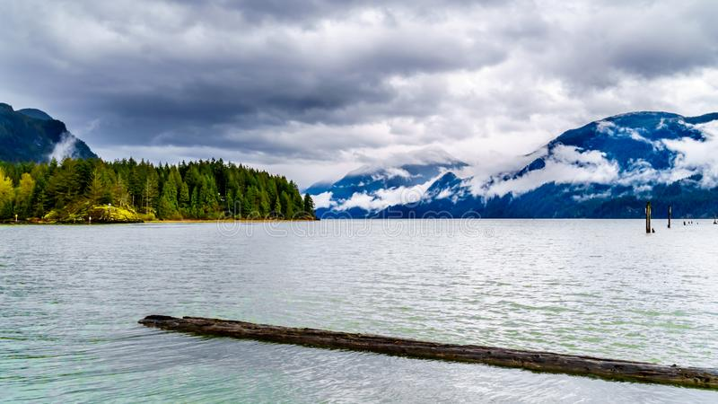 Logs floating in Pitt Lake under a dark cloudy sky with rain clouds hanging around the Mountains royalty free stock photos