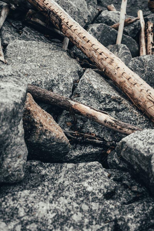 Logs jogados do mar nas pedras no porto Fundo imagens de stock royalty free