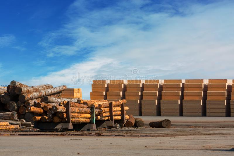 Logs and Plywood at Lumber Mill. Tree logs and plywood products at Lumber Mill in Rainier Oregon royalty free stock photo