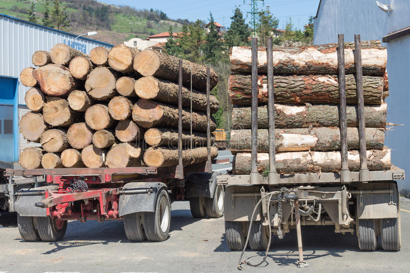 Logs at the sawmill royalty free stock photography