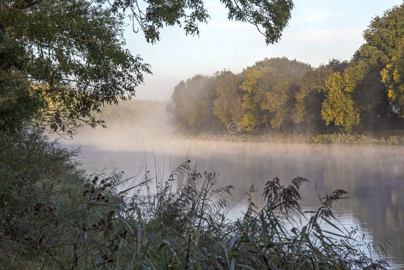 Download Loire widok rzeczny bagno obraz stock. Obraz złożonej z wybrzeże - 106900067