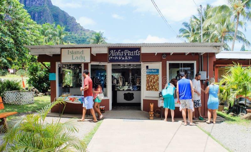 Loja de Aloha Pearls na exploração agrícola de porca tropical da macadâmia das explorações agrícolas fotografia de stock
