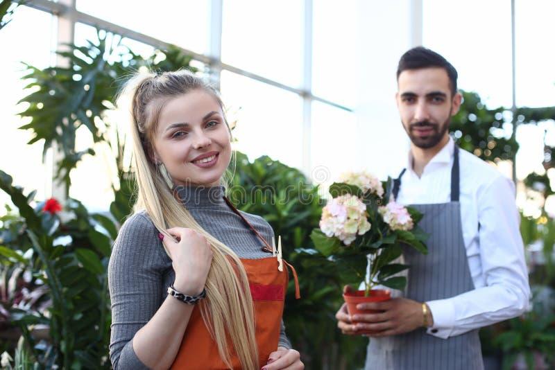 Loja feliz da planta do florista da mulher e do homem em casa foto de stock royalty free