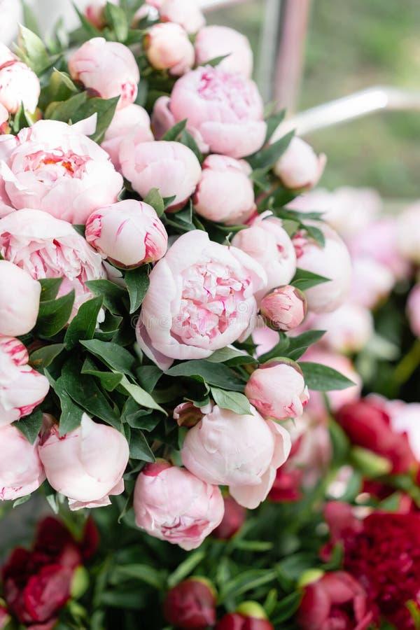 Loja floral Ramalhete bonito de peônias diferentes das variedades wallpaper Flores bonitas em uns vasos foto de stock