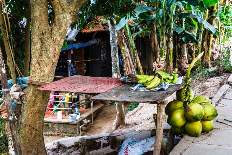 Loja no delta de Mekong, Vietname do fruto pequeno fotos de stock
