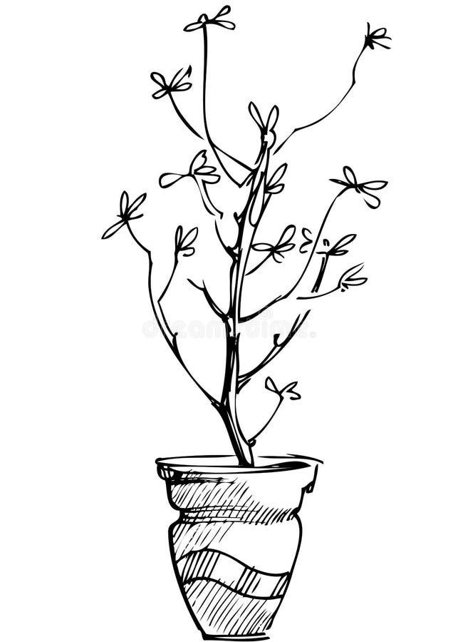 lokal för blommaväxtkrukan skissar royaltyfri illustrationer