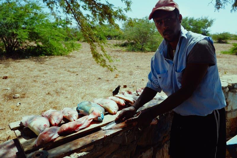 lokal fiskare som gör ren låset i skuggan för att få i väg från den tropiska värmen royaltyfri fotografi