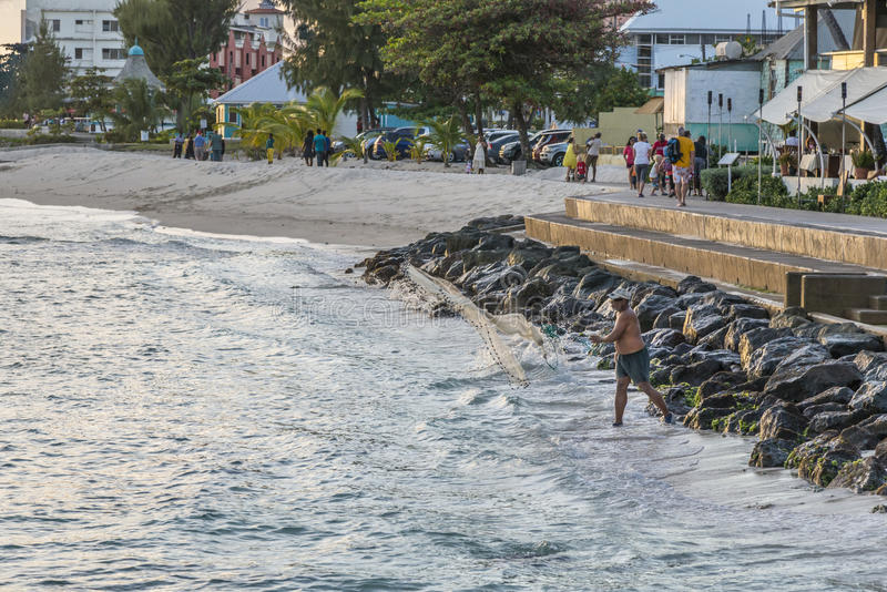 Lokal fiskare som gjuter hans netto, Barbados arkivfoton
