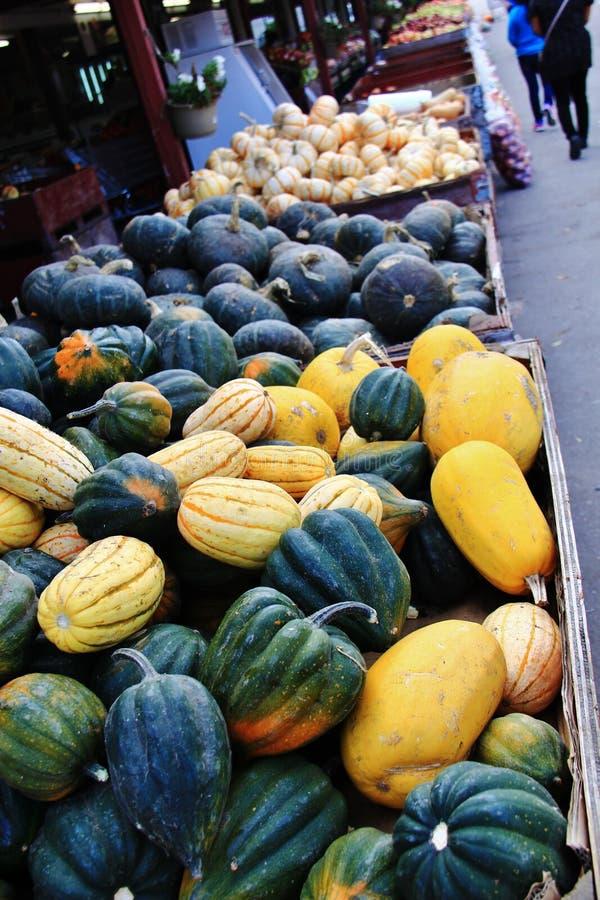 Lokal fruktaffär, återförsäljare i Princeton, British Columbia Trevlig garnering med pumpa, groud, bär frukt arkivbilder