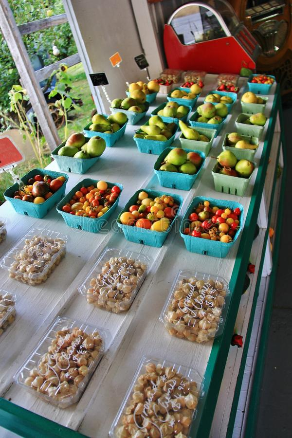 Lokal fruktaffär, återförsäljare i Princeton, British Columbia Trevlig garnering med pumpa, groud, bär frukt royaltyfri bild