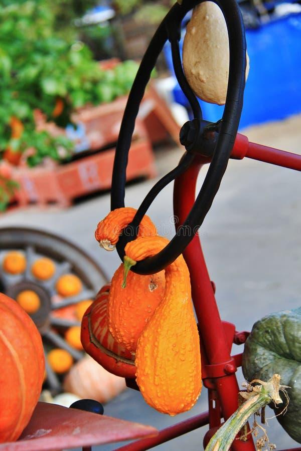 Lokal fruktaffär, återförsäljare i Princeton, British Columbia Trevlig garnering med pumpa, groud, bär frukt på tappningtraktoren royaltyfri fotografi