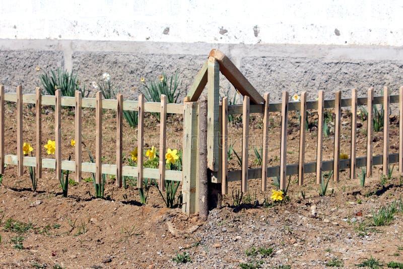 Lokal stads- trädgårdblommaträdgård som omges med det nyligen installerad träposteringstaketet och torr jord royaltyfri fotografi