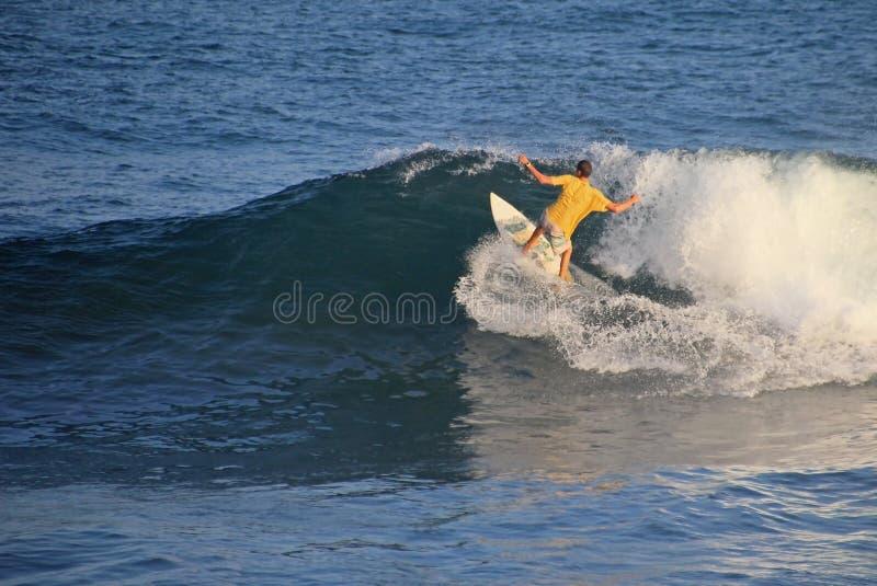 Lokal surfare i vågen, strand för El Zonte, El Salvador royaltyfri bild