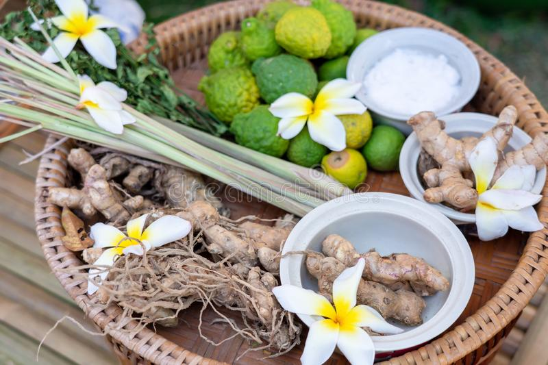 Lokala örter av den thailändska ingefäran, galangal, kaffirlimefrukt, citronellolja som förläggas på ett trämagasin som förbereds arkivfoton