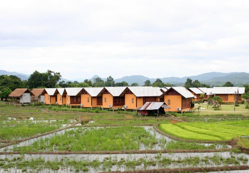 Lokale Häuschen und Bungalows in den Reispaddys lizenzfreie stockfotografie