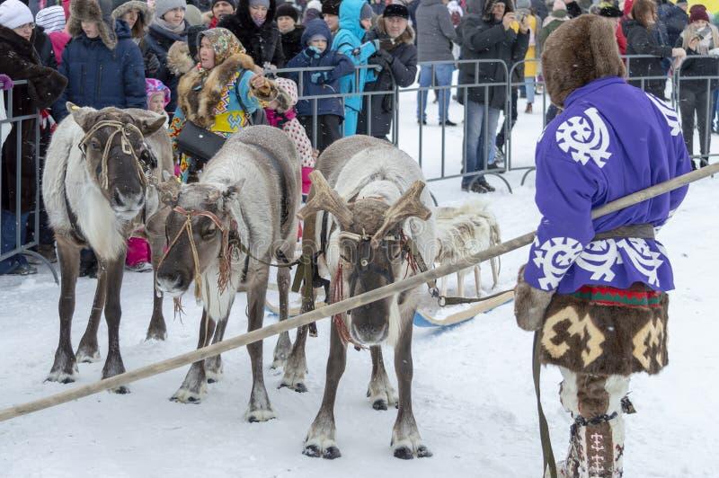 """Lokale inboorlingen - Khanty, ritkinderen op een rendierar van drie herten, ar die, de winter, van winter"""" festival """"Seeing stock fotografie"""