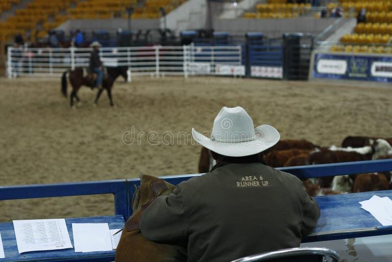 lokale landbouwers die hun quaterhorses berijden royalty-vrije stock foto