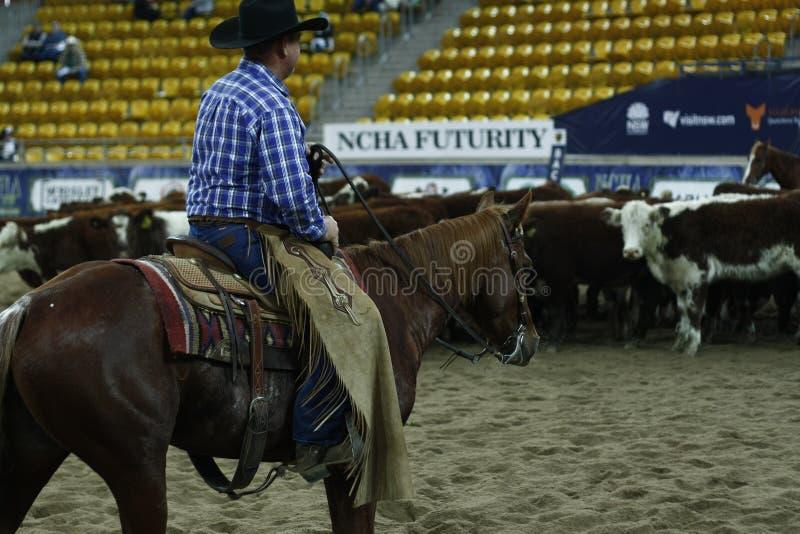 Lokale landbouwers die hun quaterhorses berijden, die bij een scherp paard, futurity concurreren royalty-vrije stock afbeeldingen