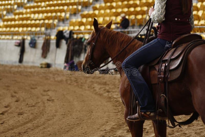 lokale landbouwers die hun quaterhorses berijden, die bij een scherp paard, futurity gebeurtenis concurreren stock foto