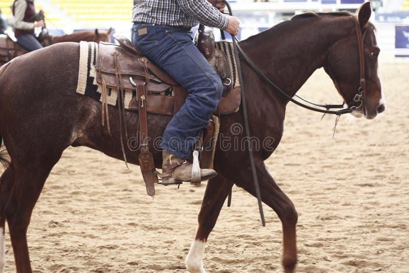 lokale landbouwers die hun quaterhorses berijden, die bij een scherp paard, futurity gebeurtenis concurreren royalty-vrije stock afbeeldingen