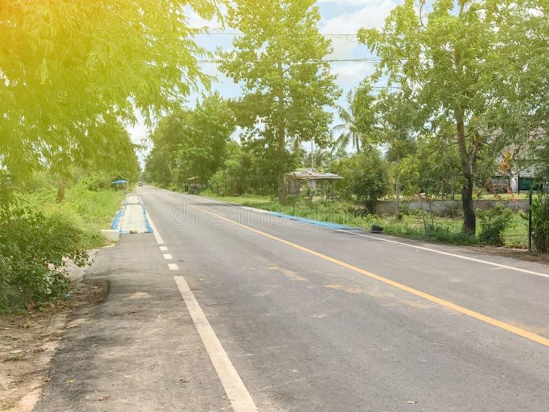 Lokale straat met boom en gloed in Phatthalung stock foto's