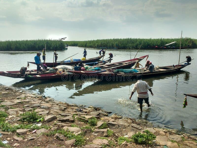 Lokale vissenmarkt bij chilikameer Odisha India stock afbeelding