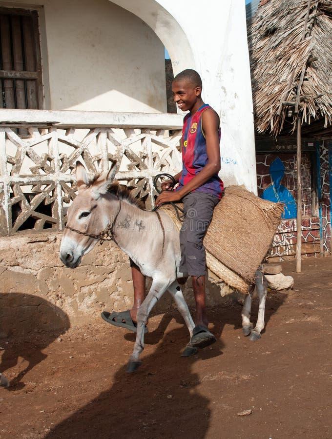 Lokaler som använder en åsna för transport i Lamu, Kenya arkivfoton