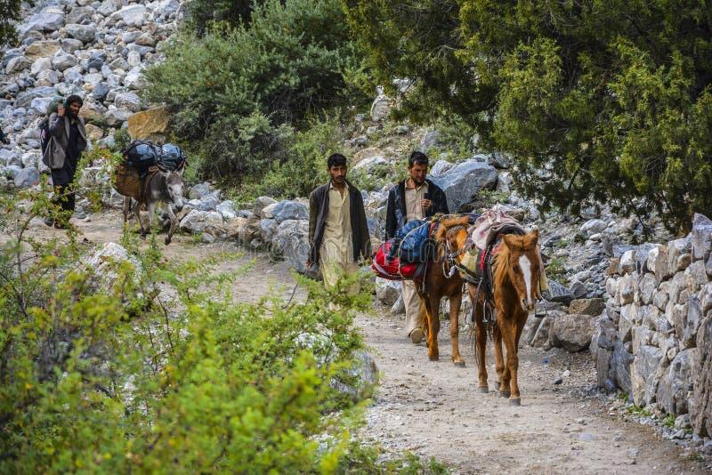 Lokaler som flyttar tourist'sbagage på hästar från felika ängar arkivfoton
