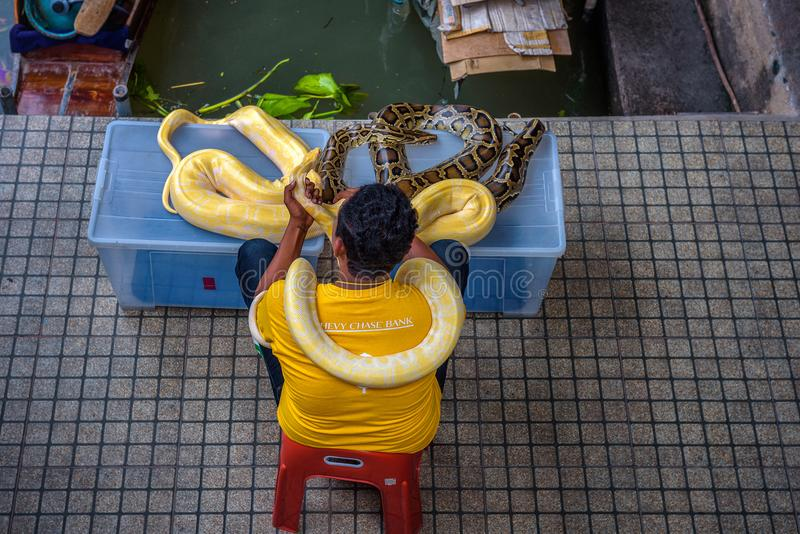 Lokaler Verkäufer bietet Bilder mit einer Pythonschlange Touristen in Thailand an lizenzfreie stockbilder