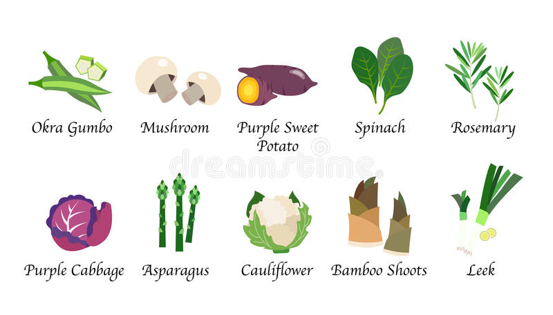 Lokalisierte Gemüselebensmittelgewürz der organischen Naturgesundheit colle vektor abbildung