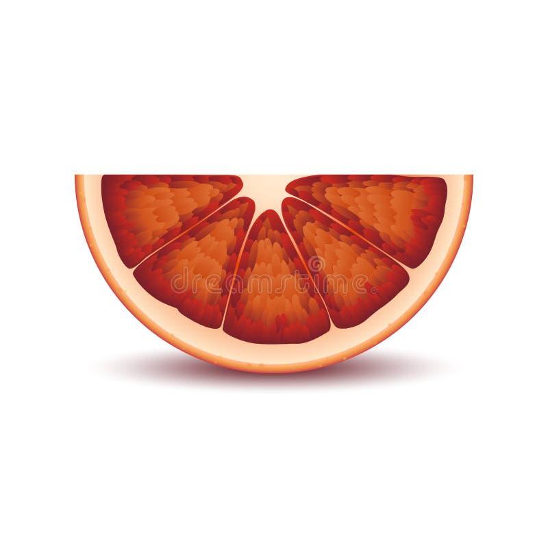 Lokalisierte Hälfte der saftigen blutigen Orange des Kreises rote Farbmit Schatten auf weißem Hintergrund Realistische farbige Sc stock abbildung