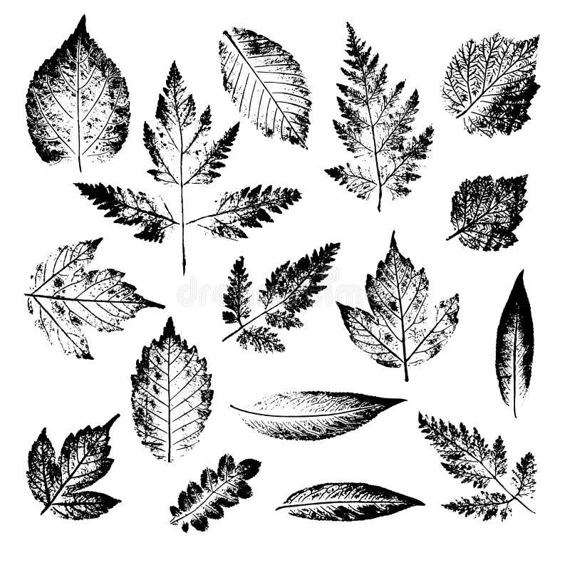 Lokalisierte schwarze Stempel von Blättern des Baums und des Busches auf weißem Hintergrund Blatttintendruck Satz des Betriebsimp vektor abbildung