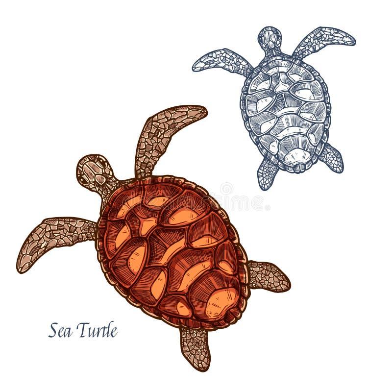 Lokalisierte Skizzenikone der Meeresschildkröte Vektor vektor abbildung