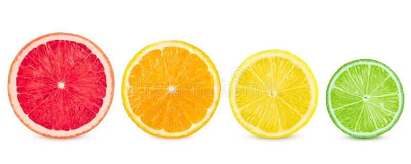 Lokalisierte Zitrusfrucht Frische Früchte in Folge geschnitten auf einem weißen Hintergrund stockfoto