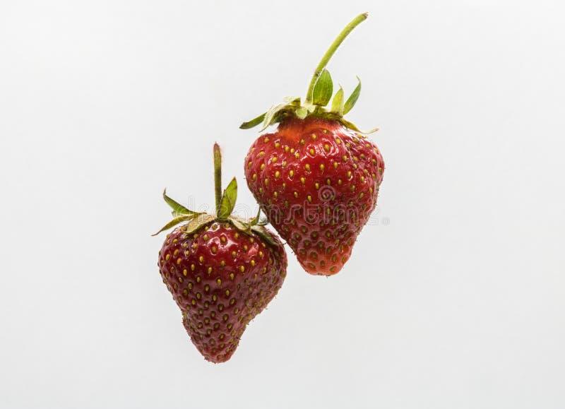 Lokalisierte zwei rote Erdbeeren auf weißem Hintergrund lizenzfreies stockbild
